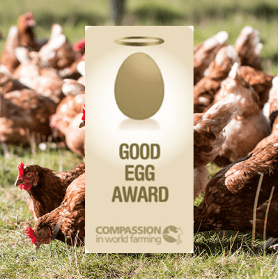 Casual Dining Group scoops Good Egg Award
