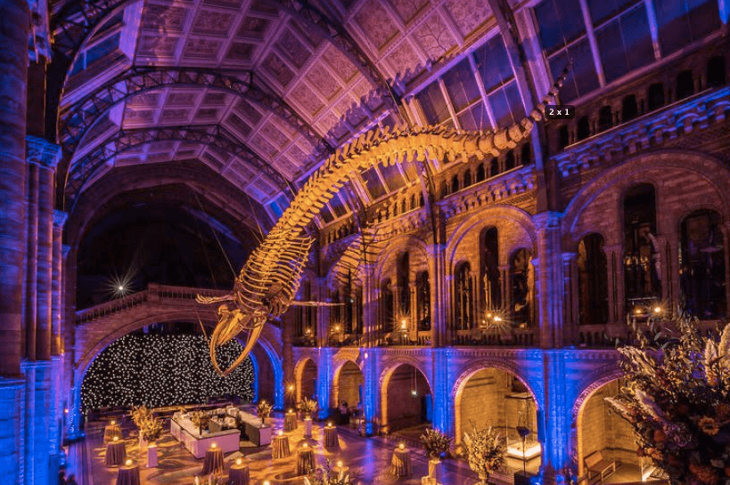 Payne & Gunter retains catering accreditation at Natural History Museum